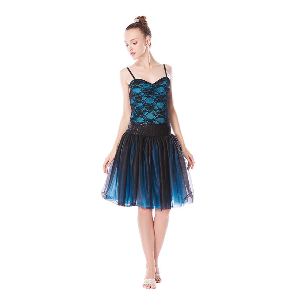 Swan Ballet Tutus Dance Costume Performance Wear Leotard Tutu Dress