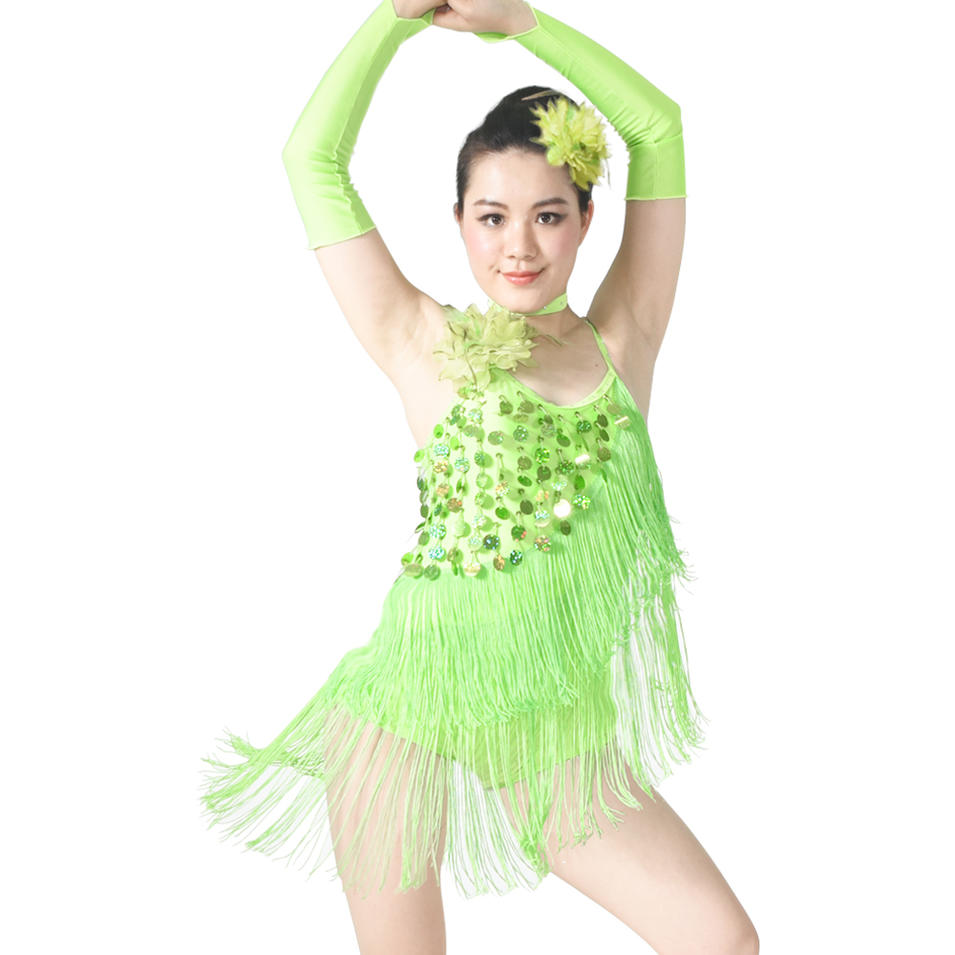 MiDee Girls Low Back Brace Skirt Sequins And Tassels For Latin Samba Salsa Dance Dress